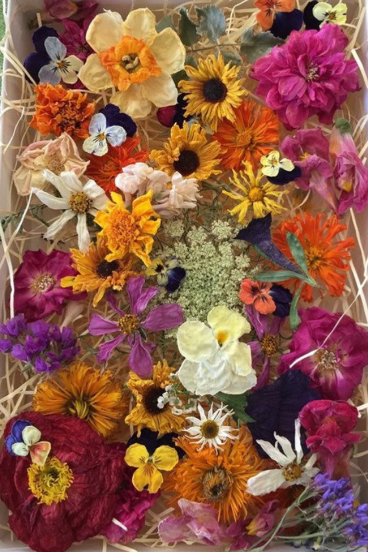 Dried Flowers, Wedding Confetti.png
