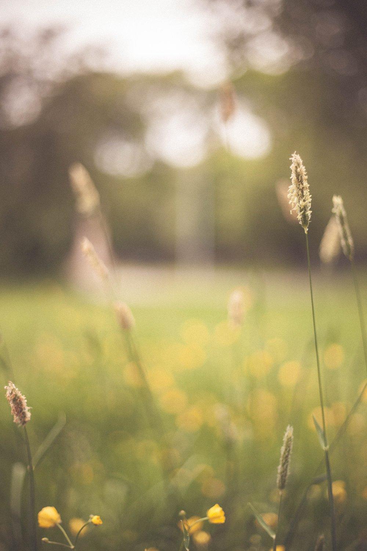 Karen-Cureton-Naturopathic-FAQ