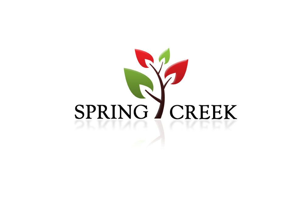 Spring Creek.jpg
