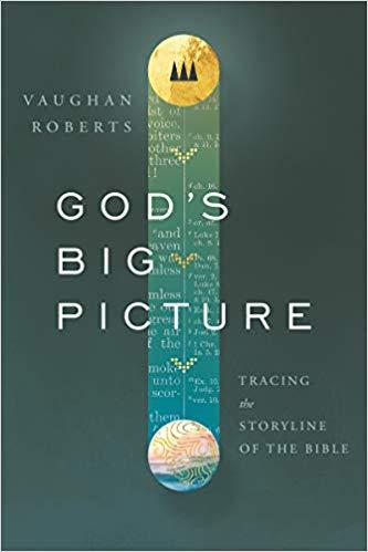 God's Big Picture - Vaughn Roberts