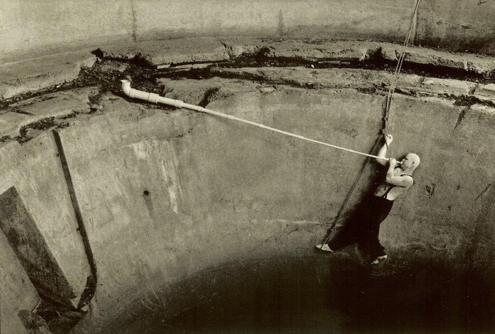 Norman (1991). Nina Glaser.