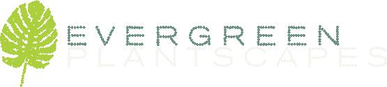 logo lightcolor.png