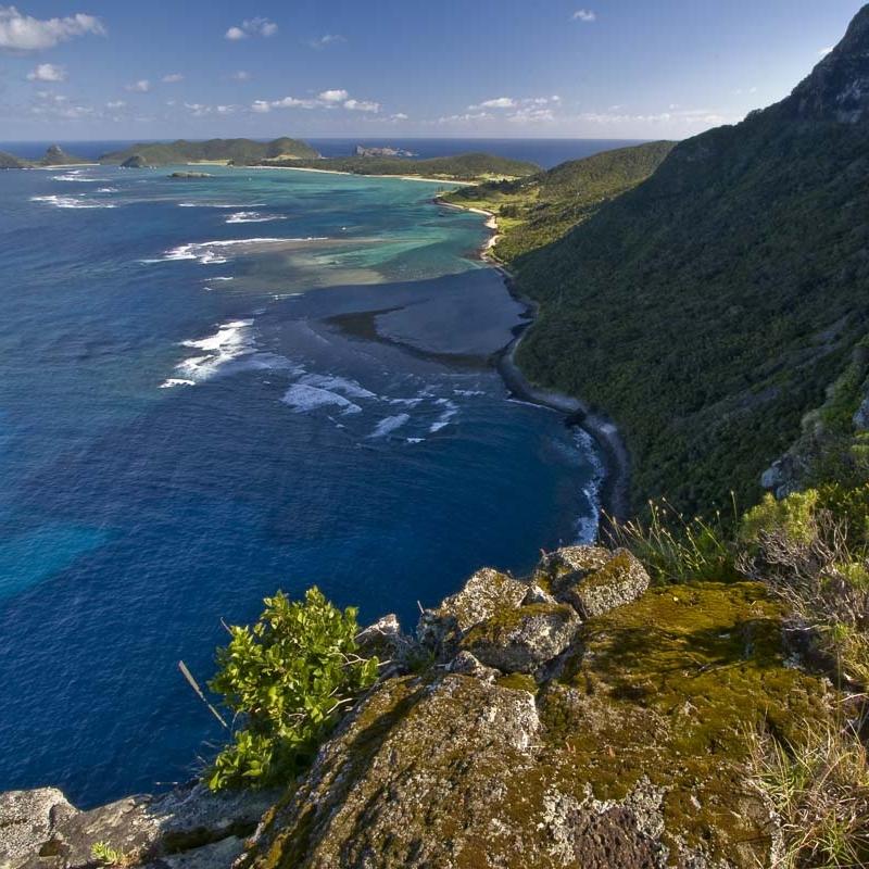 The Island -