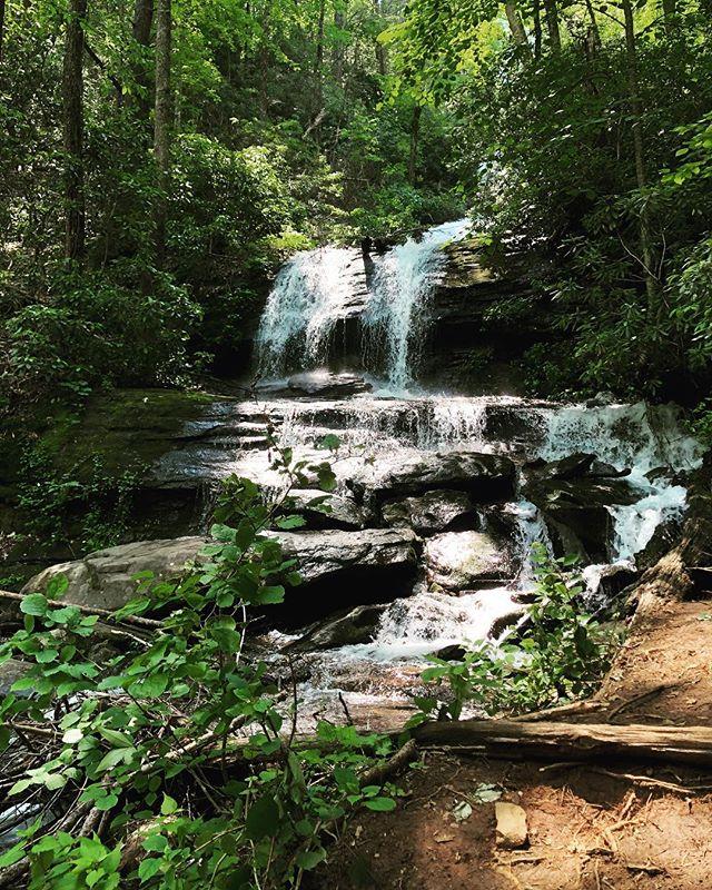 If you're looking for a quick, easy hike with optimum waterfall rewards, look no further cause DeSoto Falls is where it's at. Kid-friendly, dog-friendly, and camper-friendly, this quick hike has a little something for everyone! 🌿  #blueridgebones #blueridgemountains #bloodmountain #appalachia #appalachianmountains #desotofalls #waterfalls #getoutside #hikethat #visitblairsville #dogfriendlyhikes #seeyououtthere #explore #exploregeorgia #atlantatrails #wandernorthgeorgia #rambling #weekendwarriors #northeastgeorgia #georgiahikers