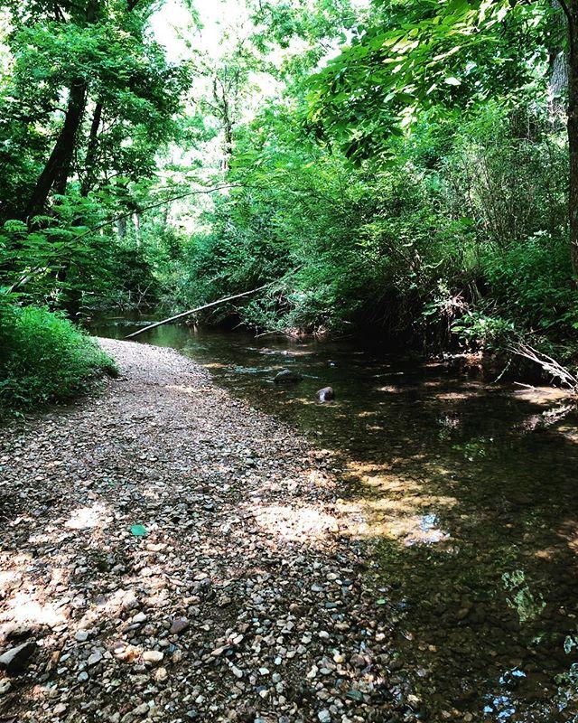 It was a creek wandering kind of Saturday ✨  #hikethat #getoutside #blueridgebones #blueridgemountains #appalachia #southernappalachia #southernliving #womenwhohike #creektime #saturdayadventures #wandernorthgeorgia #georgiahikers #exploregeorgia #seeyououtthere #wandering #adventures