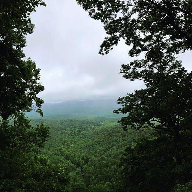 Here's to a great Monday! May your week be short, the rain hold off, and your hiking shoes clock plenty of miles 🌲 #blueridgebones #blueridgemountains #appalachianmountains #hikethat #getoutside #mountainlife #mountainmonday #seeyououtthere #wandernorthgeorgia #exploregeorgia #atlantatrails #amicalolafalls #womenwhohike #adventure #appalachia #georgiahikers #northgeorgia #northgeorgiatrails