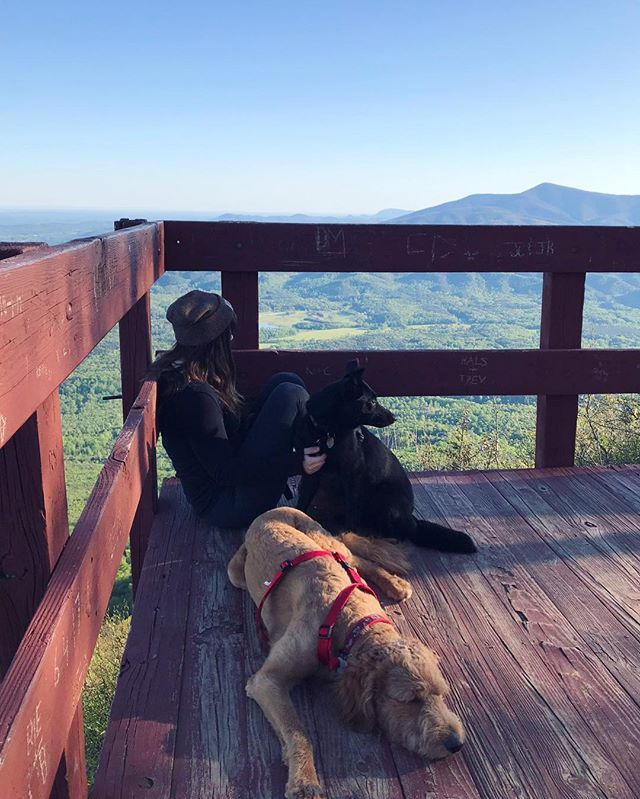 Let the wild things be wild. ✨Celebrating all the lady hikers out there today with #womenwhohikewednesday 🌲 #womenwhohike #appalachia #adventure #atlantatrails #mountainlife #georgiahikers #fortmountainstatepark #blueridgebones #blueridgemountains #dogsthathike #wandernorthgeorgia