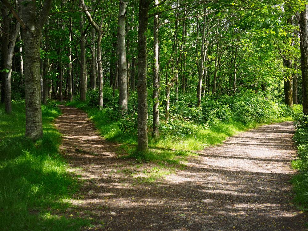 Hidden Ridge Camping Walking Trails