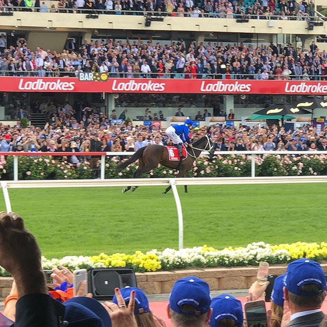 Winning with Winx!!! Ballpark Entertainment are celebrating with Winx.  To enjoy the Spring Racing Carnival with Ballpark, contact us!!