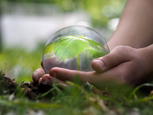 Lent is a good time to look at ways of cutting back in practical ways which will help build up our fragile earth, God's creation (Image: Shutterstock).