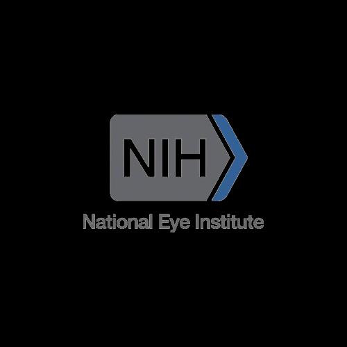 logo-NEI.png
