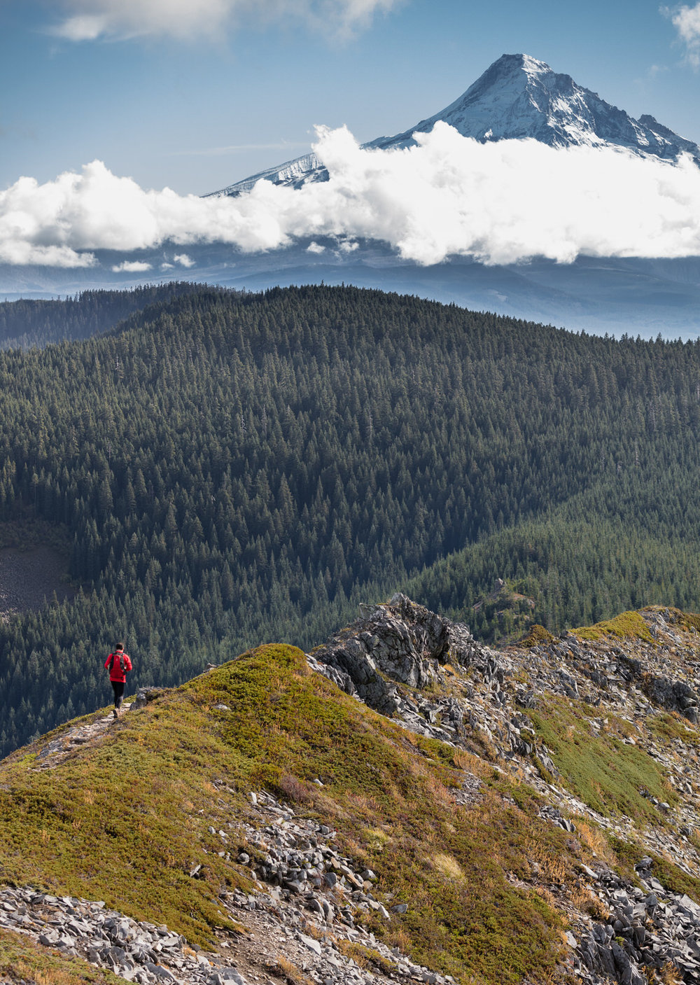 Trail runner on Tomlike Mountain
