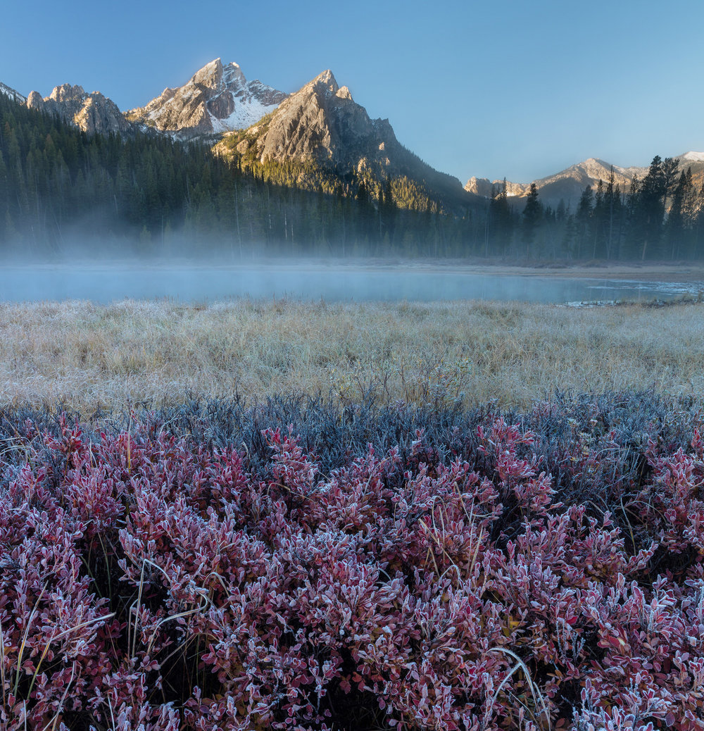 Mount McGowan rises behind the huckleberry and marsh grass near Stanley Lake, Idaho