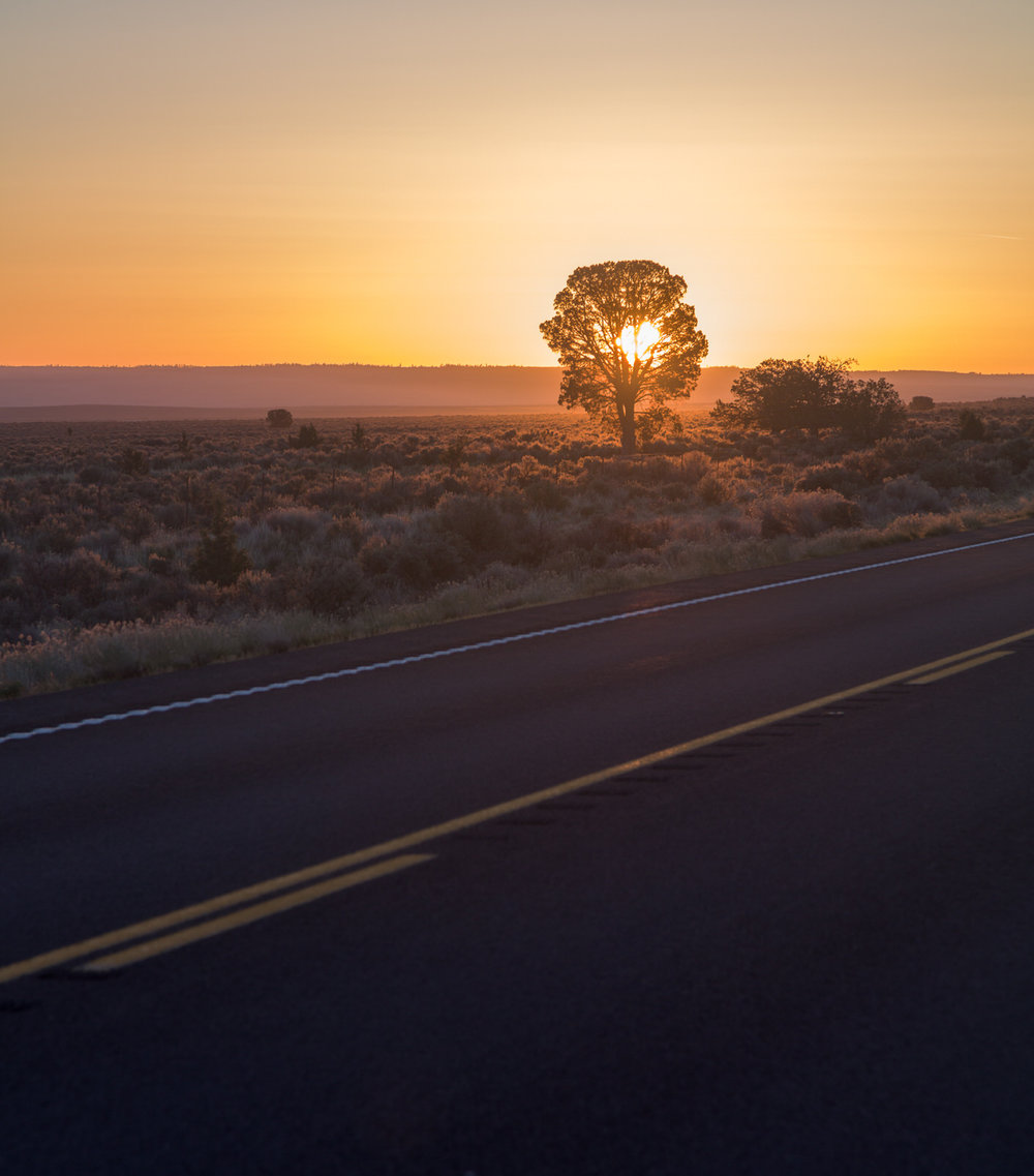 Sunrise silhouette along the Central Oregon Highway