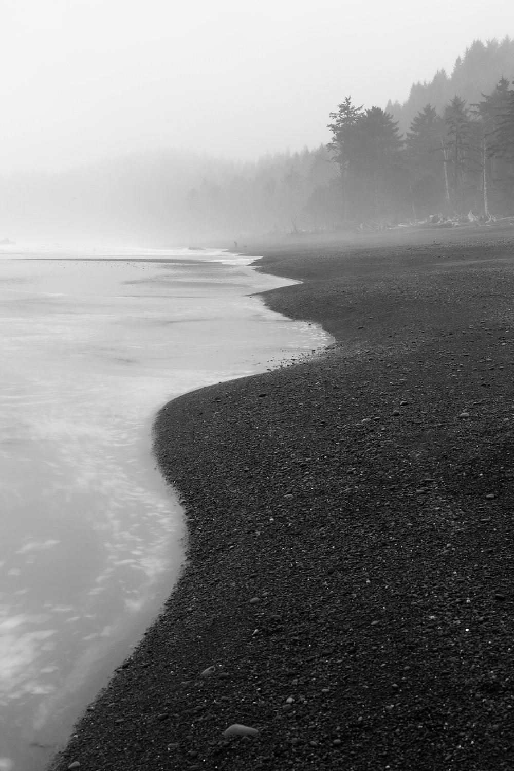 Foggy morning at Rialto Beach on the Olympic Penninsula