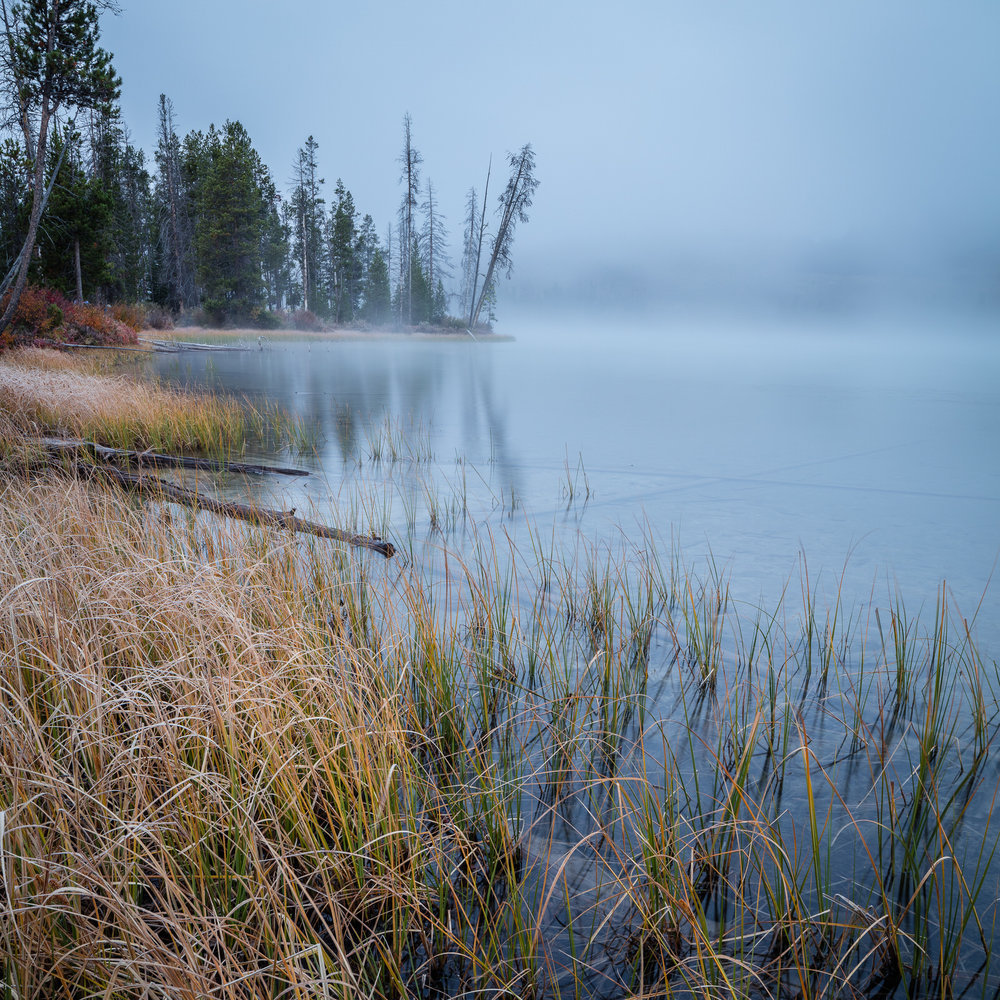 Frosty morning at Little Redfish Lake near Stanley, Idaho