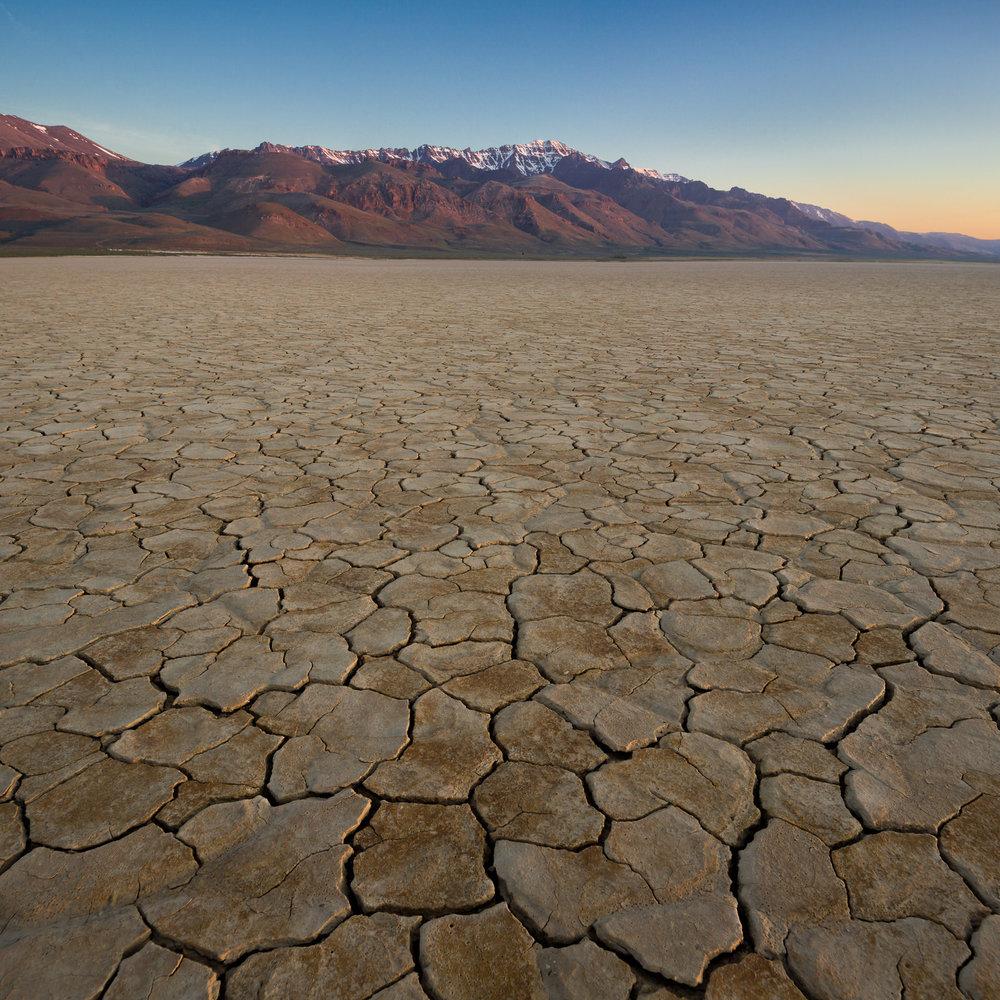 Cracked playa in the Alvord Desert