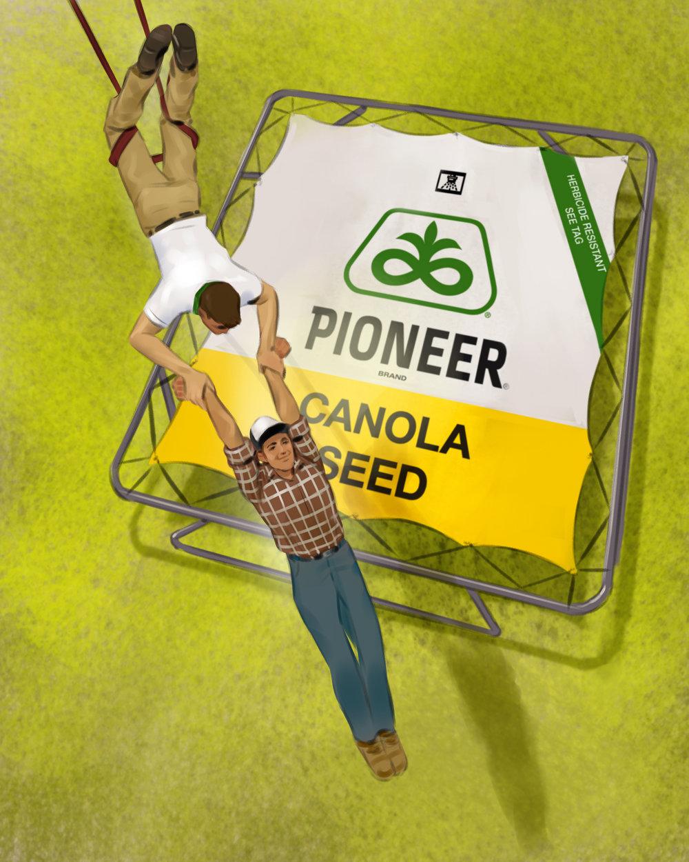pioneer03final.jpg