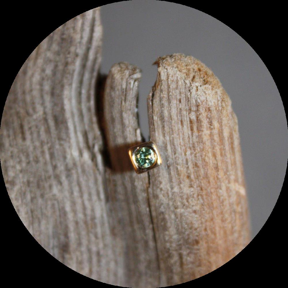 Green Diamond Earring in 14K Yellow Gold