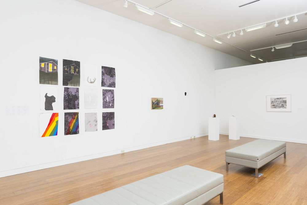 installation view, 2017, Cleve Carney Gallery