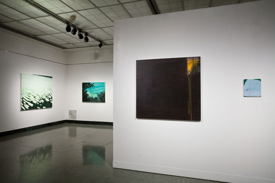 installation view, 2010, Playing Fields, School of Fine Arts, Indiana University, Bloomington, IN