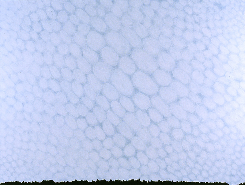 "Clouds, 2005, acrylic on canvas, 54"" x 72"""