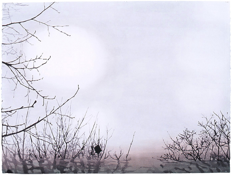 "Nest Drawing (Sunspot), 2005, ink & acrylic on paper, 31"" x 42"""