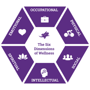 The Six Dimensions Of Wellness Model By Dr Bill Hettler
