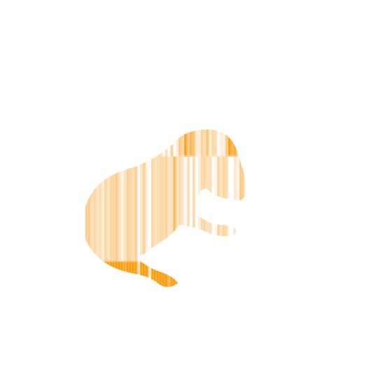 heatmap mice orange.png