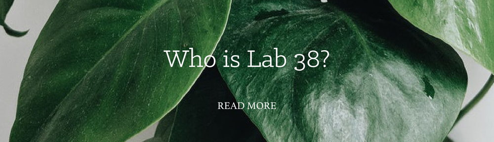 WHO IS LAB38-1.jpg