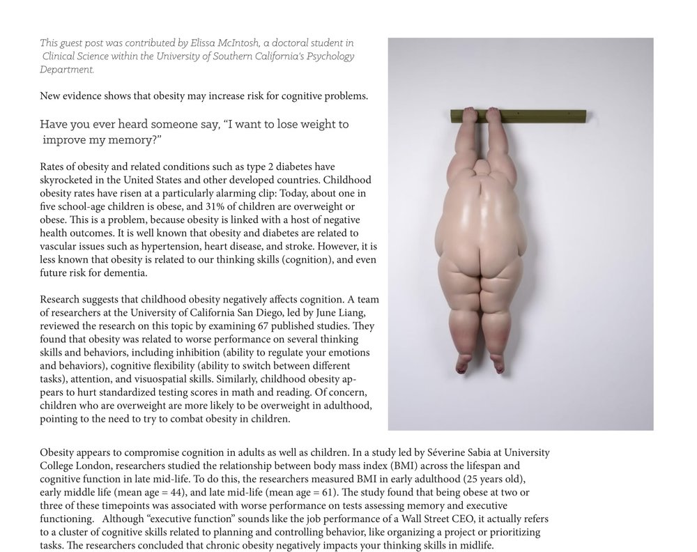 obesity+stupid+article-1.jpg