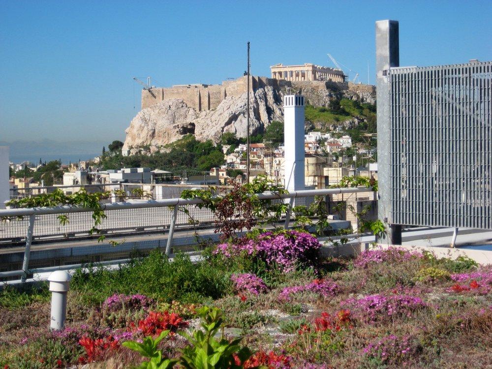 vivacity acropolisview.jpg