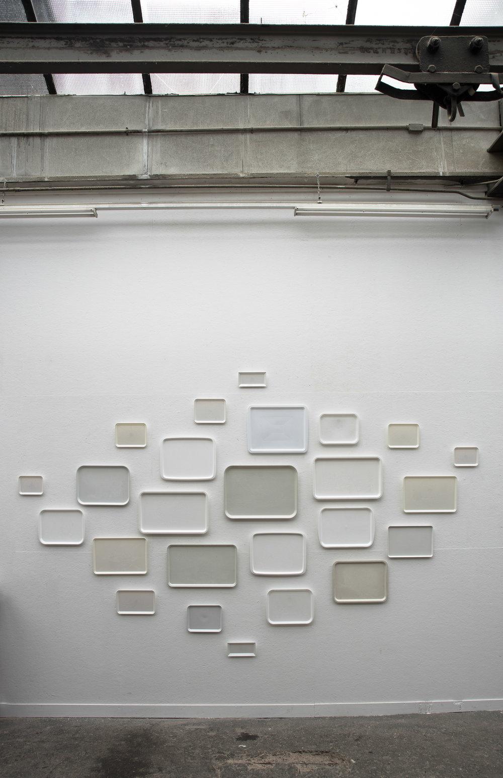Ursus Maritimus. 25 engraved plastic trays. Installation 450cm x 300cm.