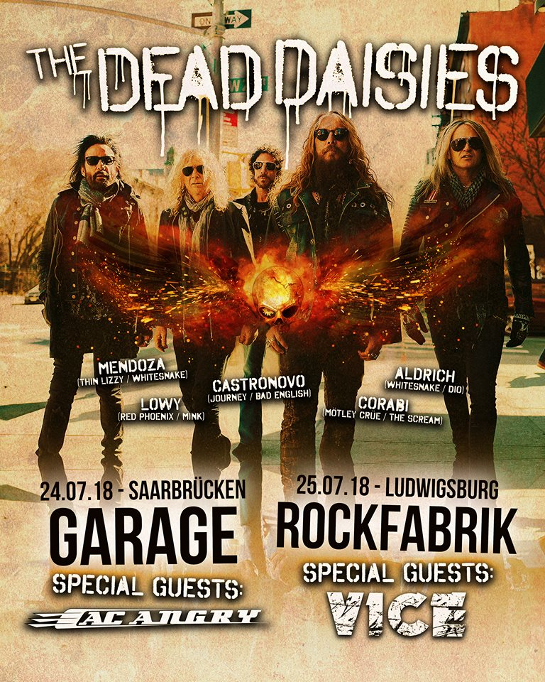 the dead daisies.jpg