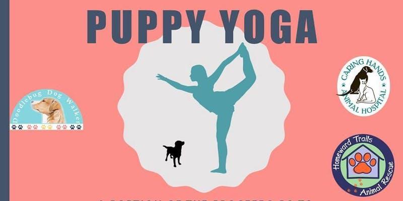 puppy-yoga-arlington.jpg