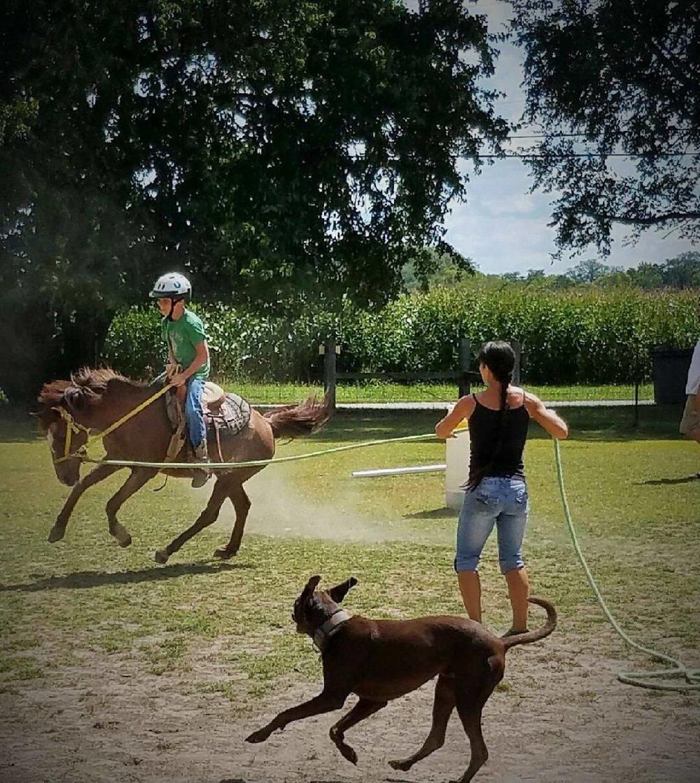 ridinglessons.jpg
