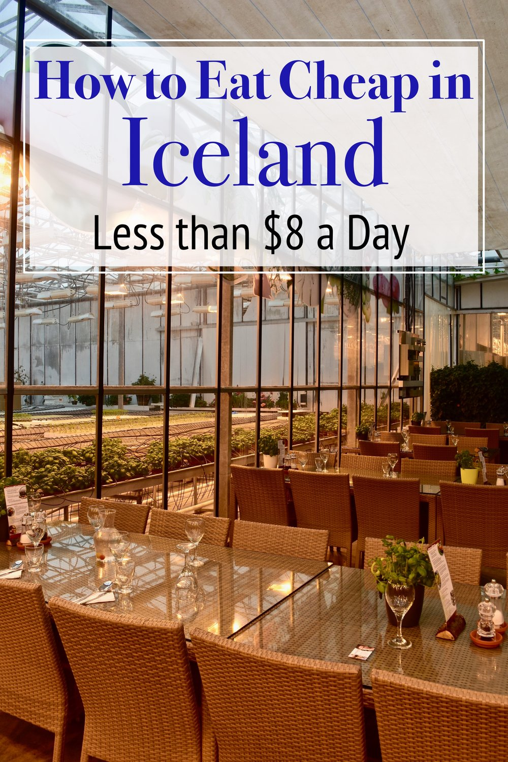 How to Eat Cheap in Iceland.  We spent less than 8 Dollars per day on food.  Iceland is an extremely expensive country but there are ways to bring down costs. #Iceland #Expensive #budget #cheap #food #europe #travel