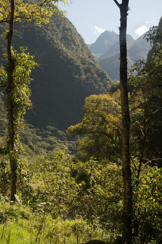 View from Machu Picchu Train