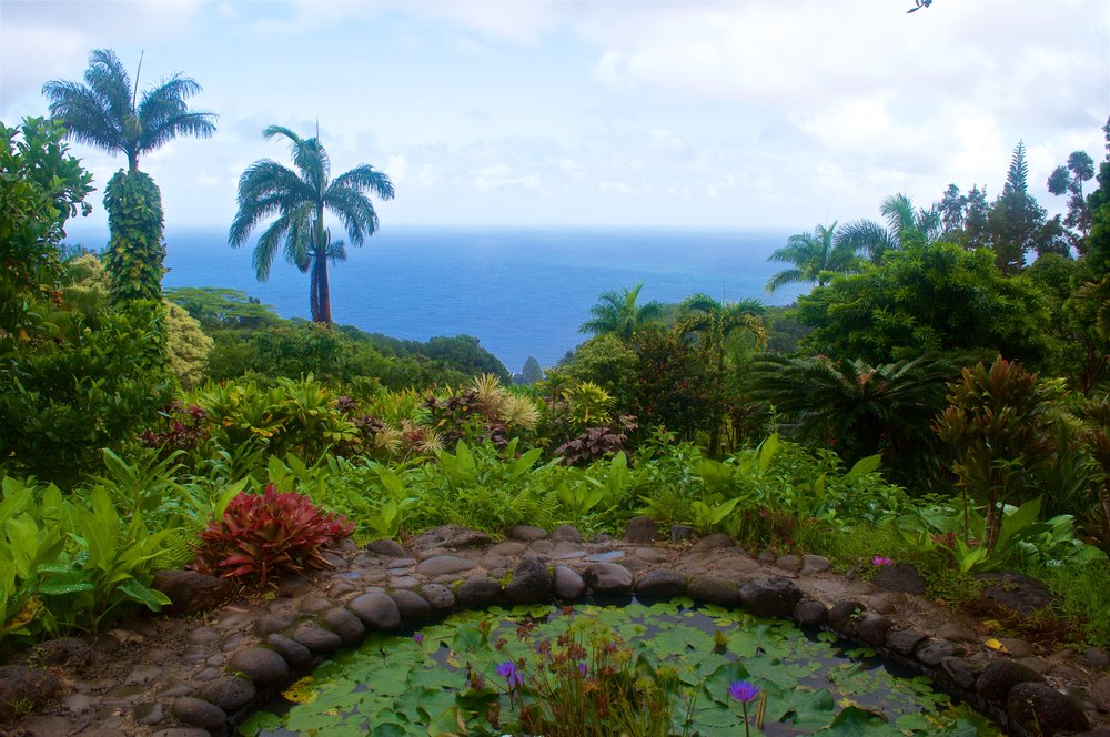 Garden of Eden, Road to Hana, Maui
