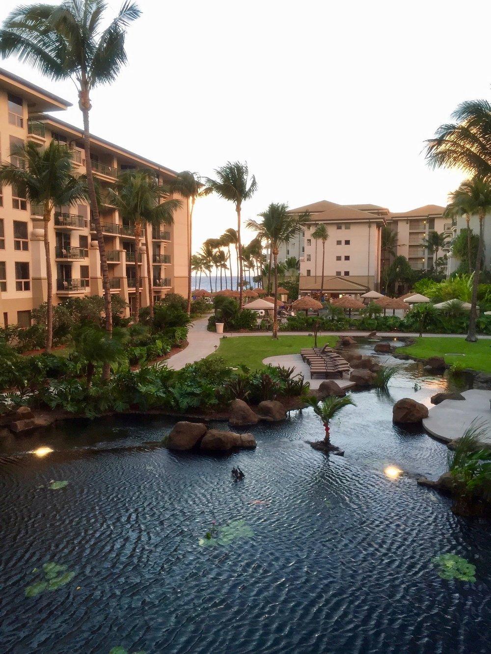 Maui Hotel Beach