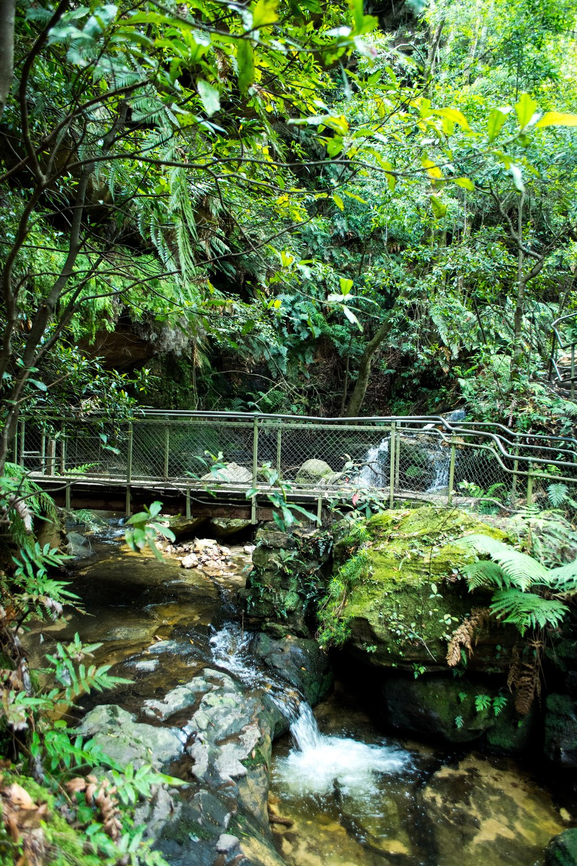 Leura Cascades to Gordon Falls Walk