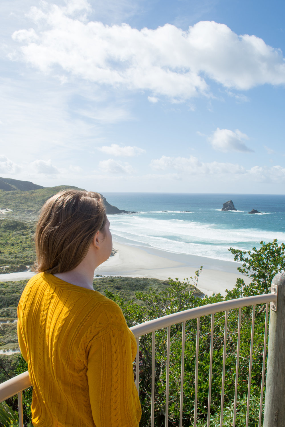 Looking out on Sandfly Bay