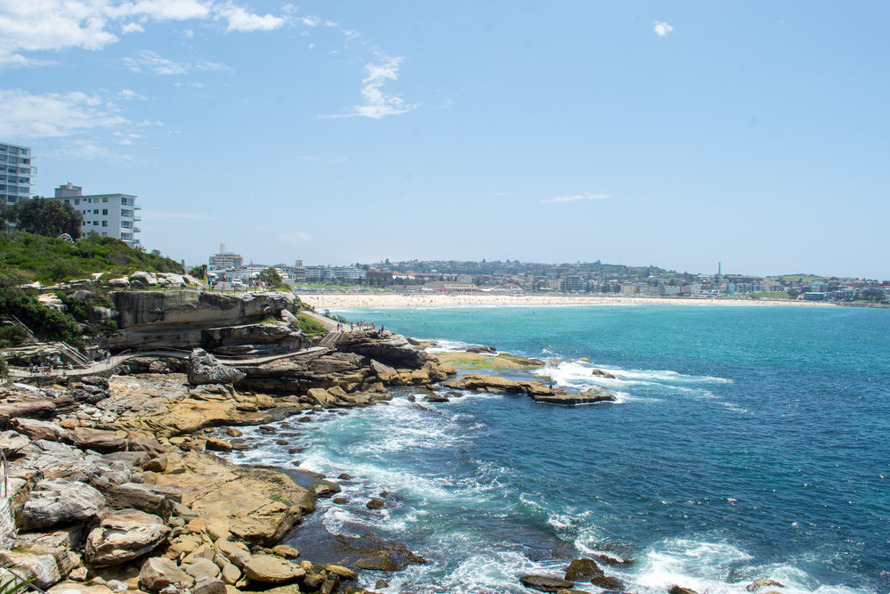 View of Bondi Beach from the Bondi to Bronte Coastal Walk