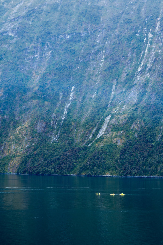 Kayaks in Milford Sound