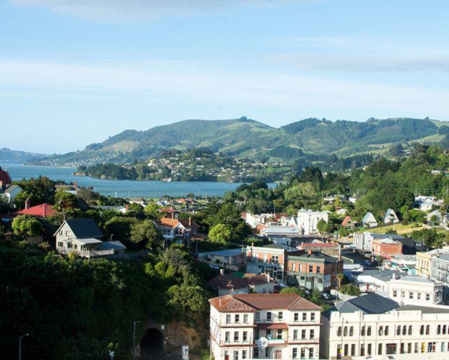 This was our first view of beautiful New Zealand.  Hard to not fall in love.⠀⠀⠀⠀⠀⠀⠀⠀⠀ 📍Port Chalmers, New Zealand⠀⠀⠀⠀⠀⠀⠀⠀⠀ __⠀⠀⠀⠀⠀⠀⠀⠀⠀ #newzealand #nz #nzmustdo #dunedin #otago #portchalmers #ovationoftheseas #dunedinnz #nzsouthisland #southisland #oceania #tasmansea #cruise #newzealandcruise #happypassport #rollinghills #newzealandtown #sunnyday #cruiseport #traveltheworld #travelphotography #travelblog #travelwriter #travels #visiting #worldplaces #passportready #aroundtheworld #instago