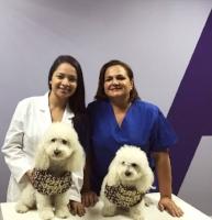 Dra. Alina Conte Chan y Msc. en Psicopedagogía María Gabriela Fonseca Guevara