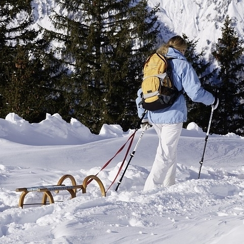 Winterwandern und Rodeln.jpg