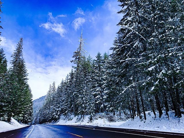 More snow days please! ☃️❄️🌬 • • • • • • #fitcannabisgirl #snow #winter #winterwonderland #winterfell #oregon #hotsprings #roadtrip #cannabis #scenery #photography #photo #naturelovers #nature #white #powder #snowbunny #wanderlust #adventure #adventurer #blue #sky #trees #drive #belknaphotsprings #snowdays #snowy #mountains #mountain