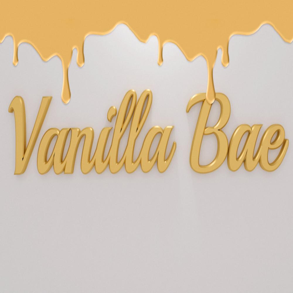 _ Vanilla Bae _  Logo.png