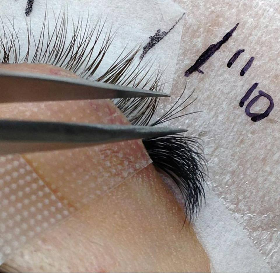 Eyelash Extensions Luxury Lashes Prohigh Quality Affordable